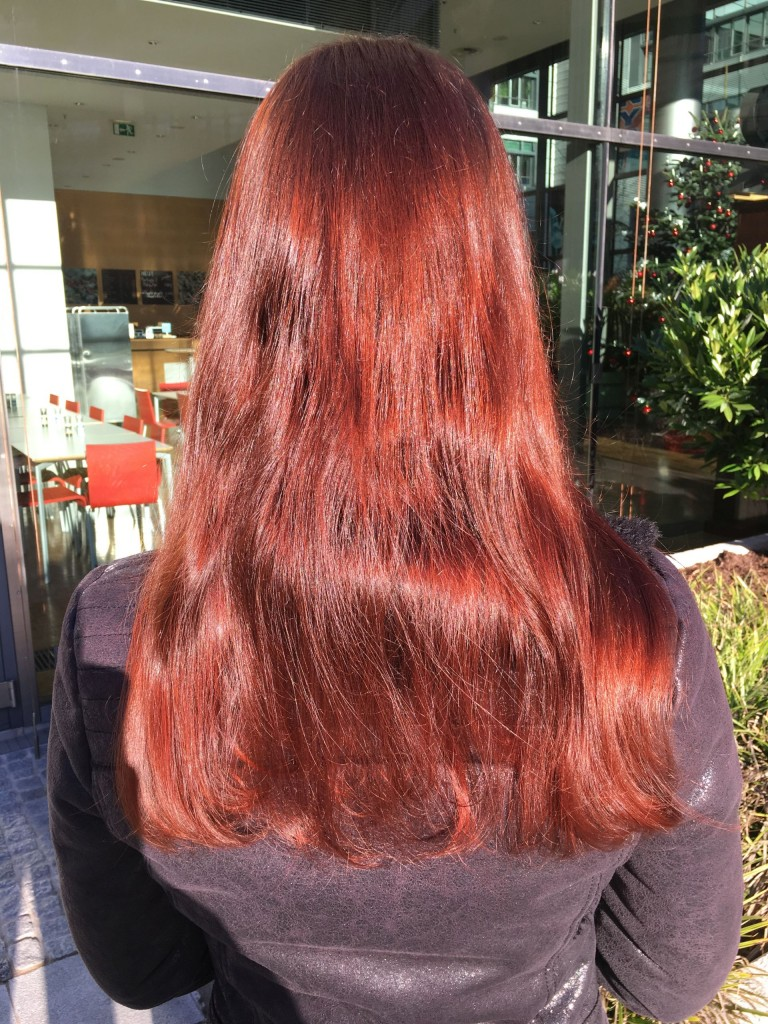 Bockshornklee - meine Haare