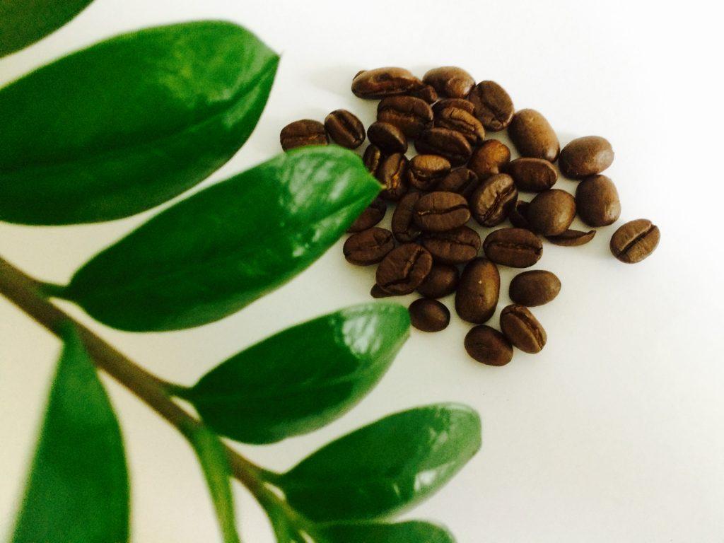 Kaffee als Grundlage für ein tolles Haarpflege-Peeling